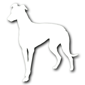 Bark Inn Kennels Sticky Logo